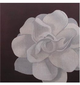 "Point of it All Camelia<br /> 12"" x 12"""