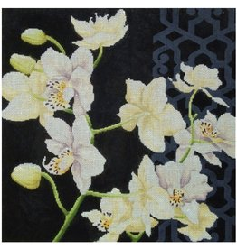 "Kirk &amp; Hamilton White Orchid on Black background<br /> 15.5"" x 16"""