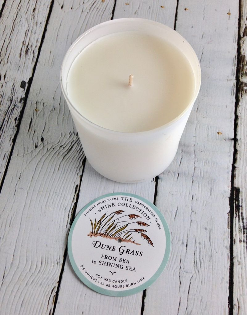 Dune Grass 10 oz Soy Candle