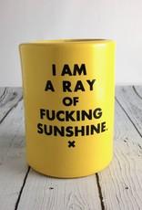 I Am A Ray of Fucking Sunshine Beer Koozie