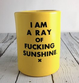 I Am A Ray of Fucking Sunshine Beer Koozie