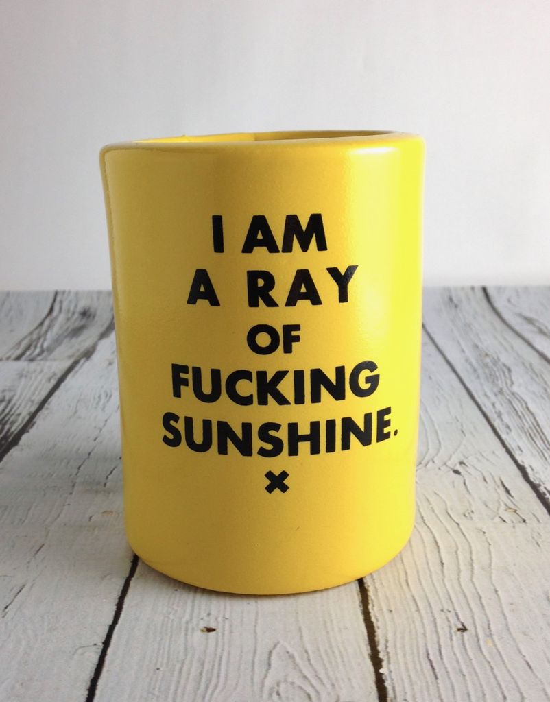 I Am A Ray of Fucking Sunshine Can Holder