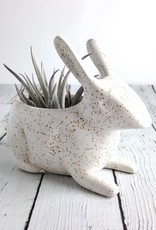 Speckled Jack Rabbit Planter