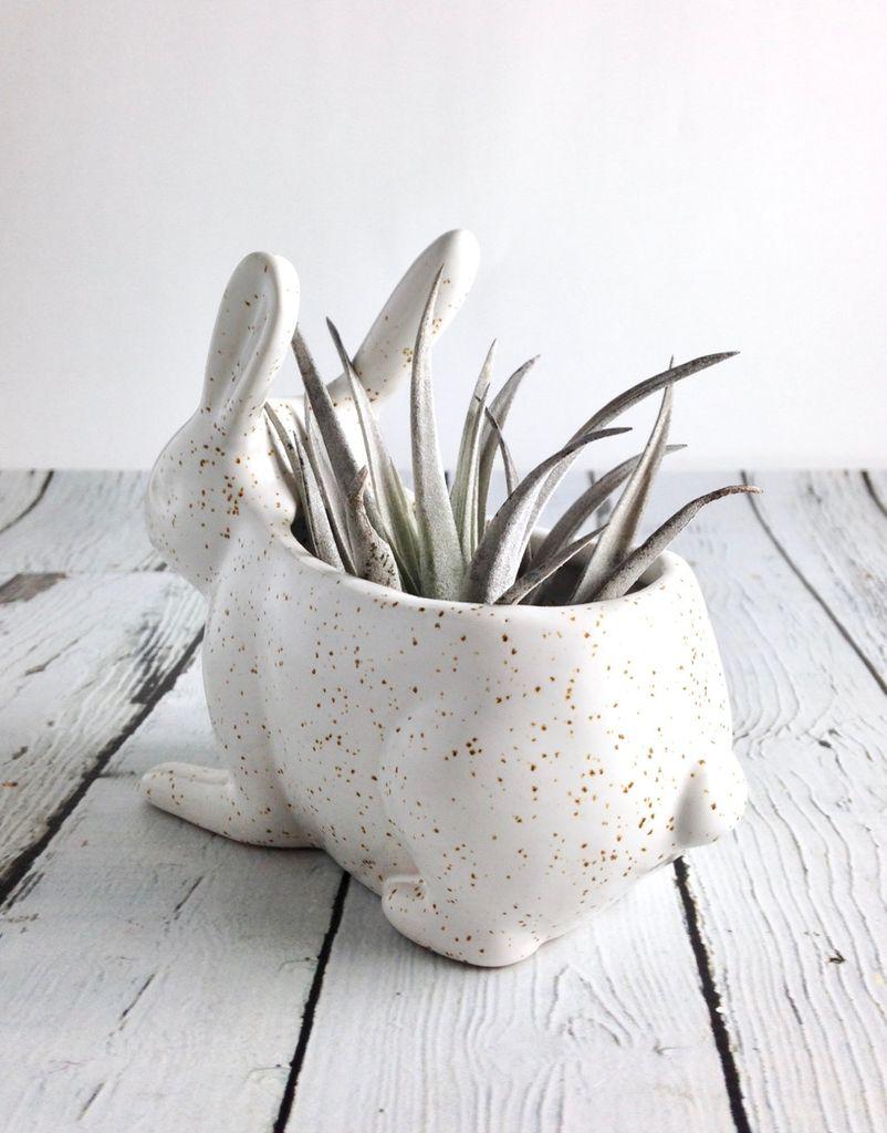Speckled Jack Rabbit Planter