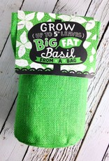 Big Fat Basil Bag Plant