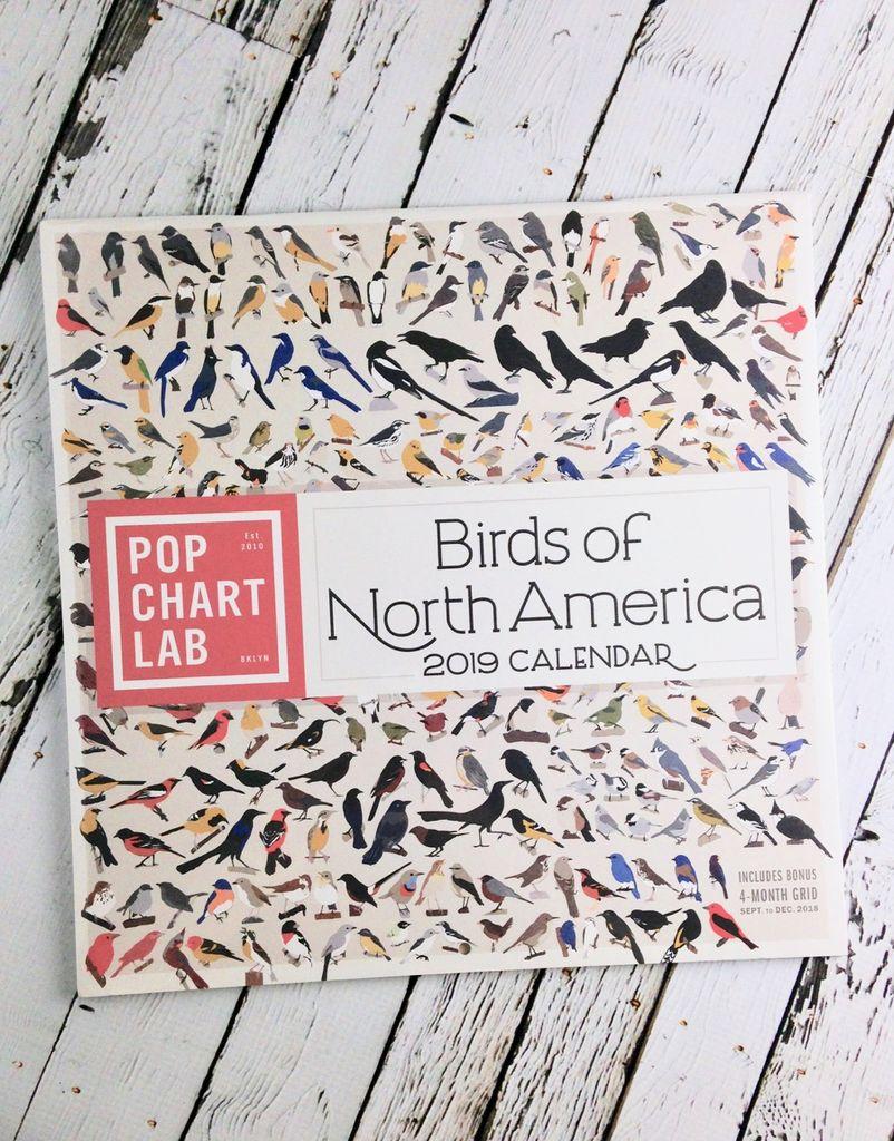 Birds of North America 2019 Wall Calendar