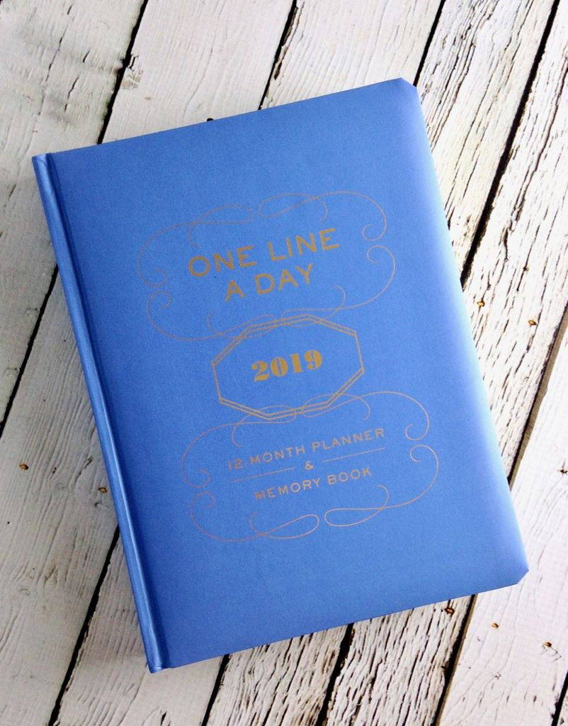 One Line a Day 2019 Planner & Memory Book
