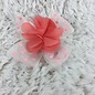 Coral Flower on Pink Polkadot Bow