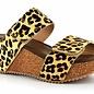 Leopard Wild Thing Sandal