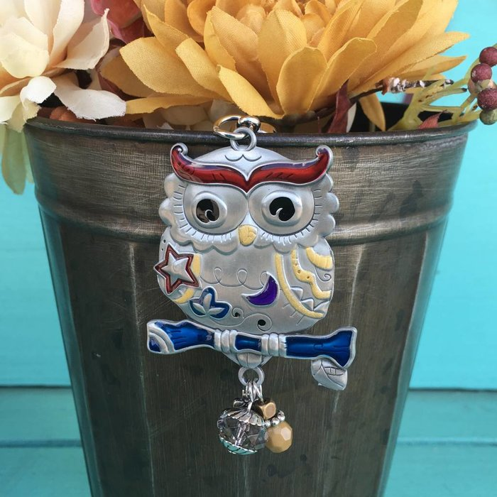 Owl Color Art Key Chain