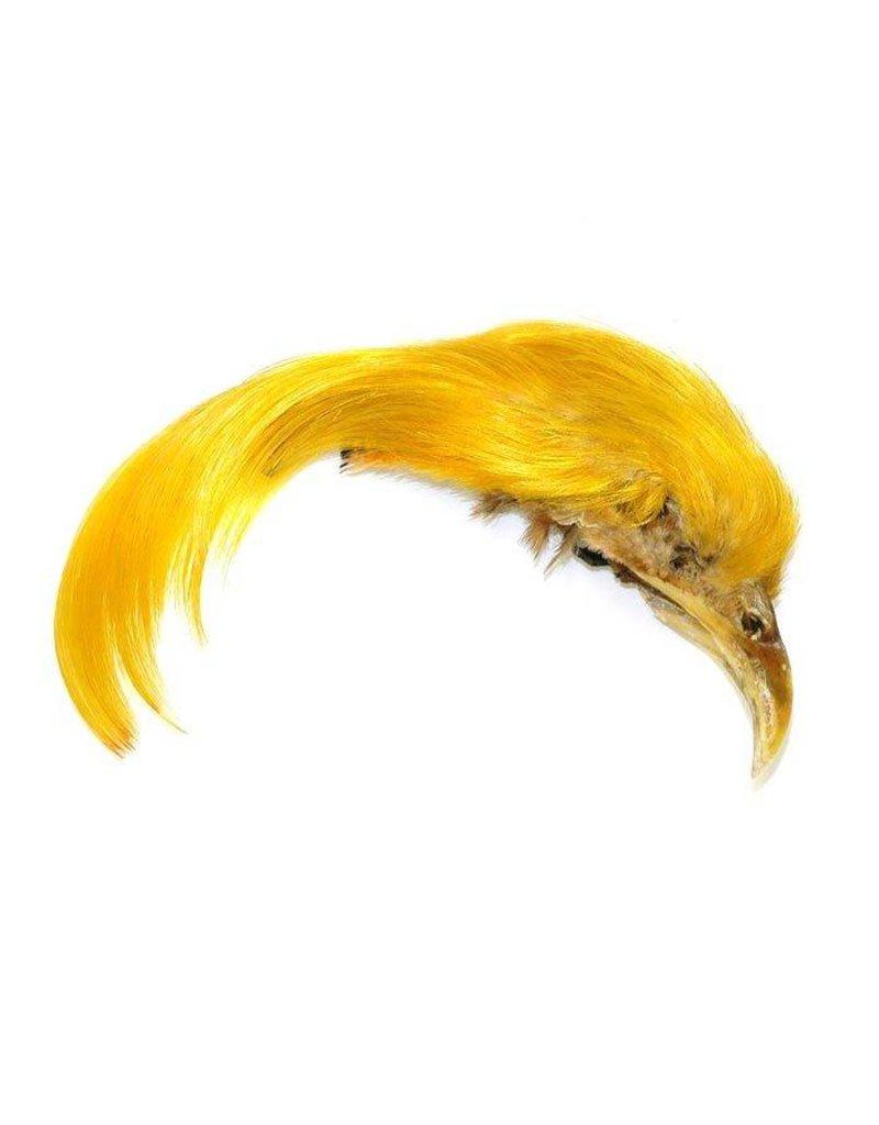 Golden Pheasant Complete Crest