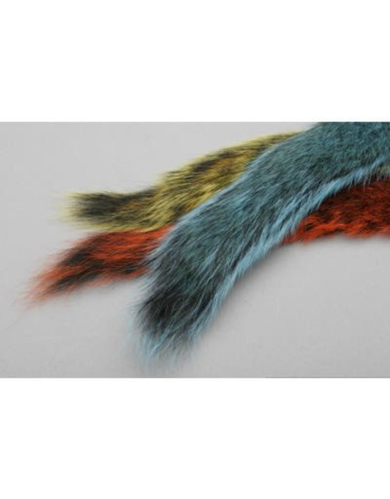 Gray Squirrel Tail