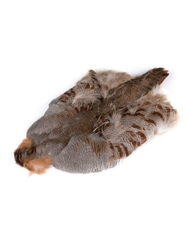 Hungarian Partridge Whole Skin