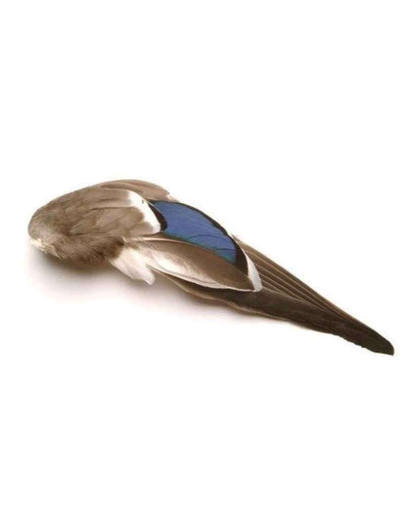 Mallard Whole Wings