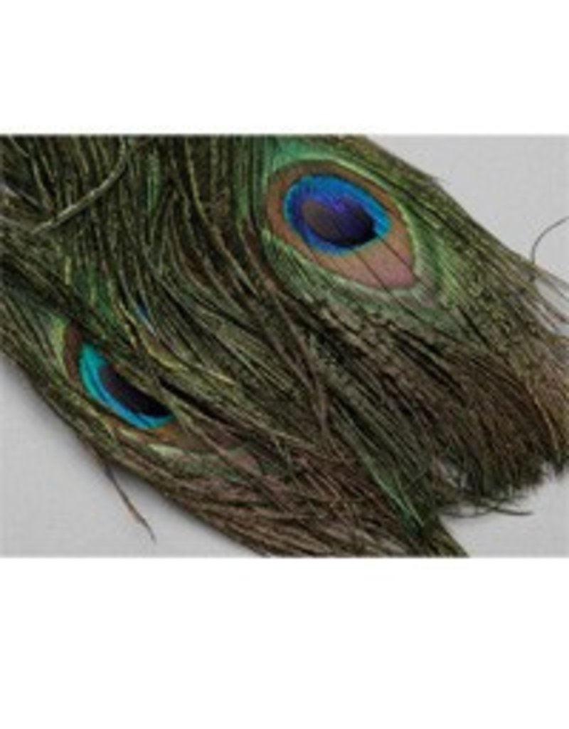 Peacock Eyes Natural