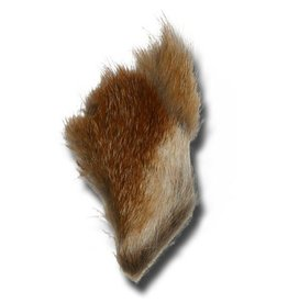 Red Fox Patch Assorted