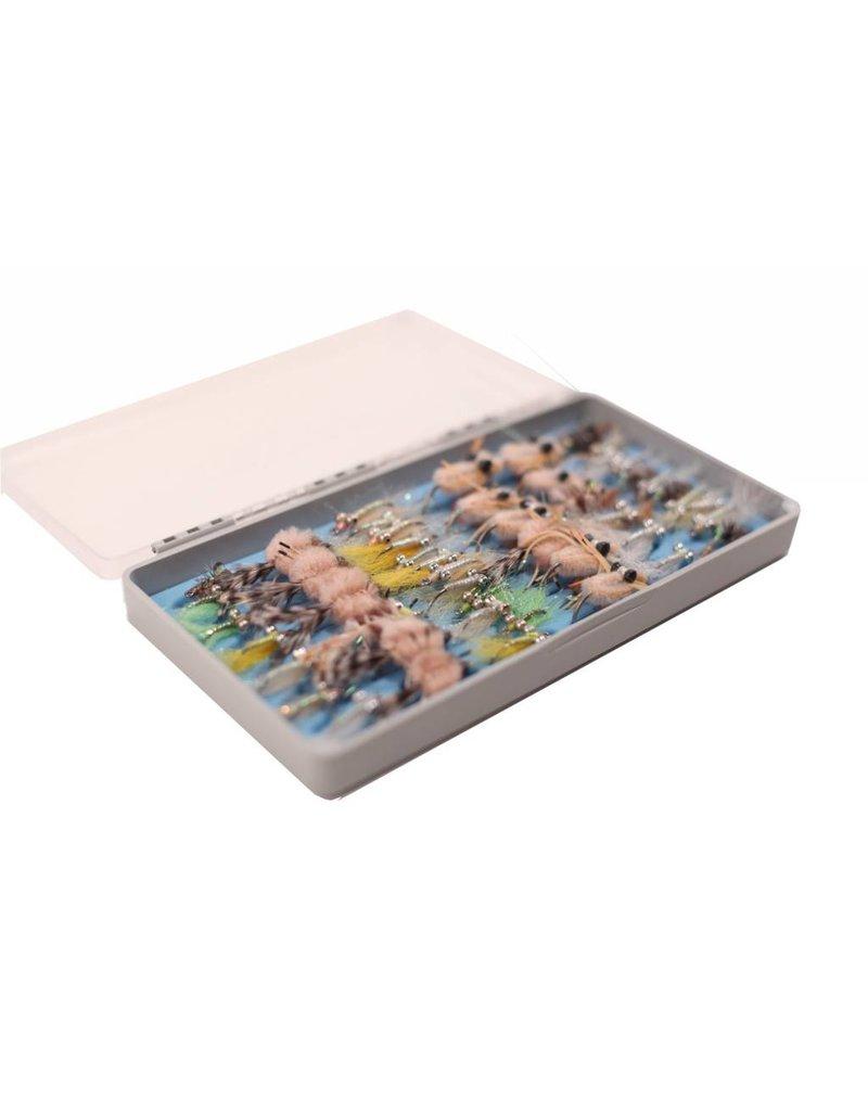 Tacky Fly Box: Big Bug Box