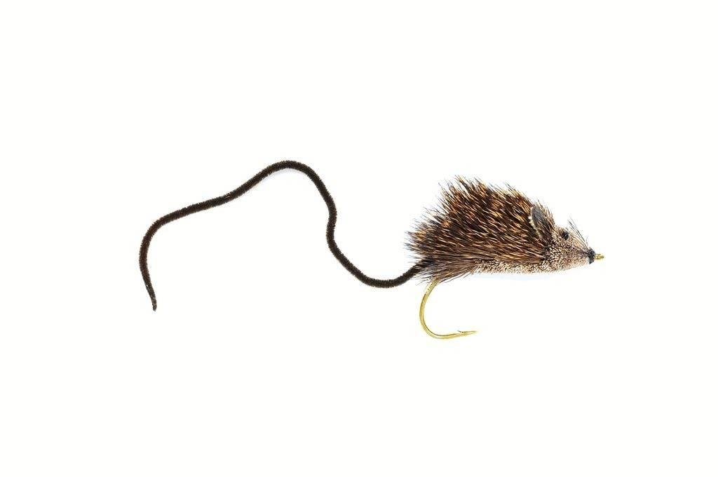 Mouse Rat #4
