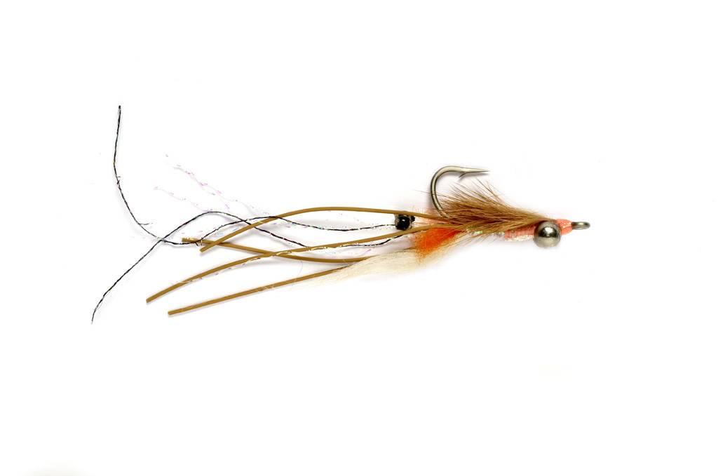 Petersons Spawning Shrimp