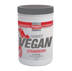 Hammer Nutrition Hammer Vegan Protein Powder - Strawberry