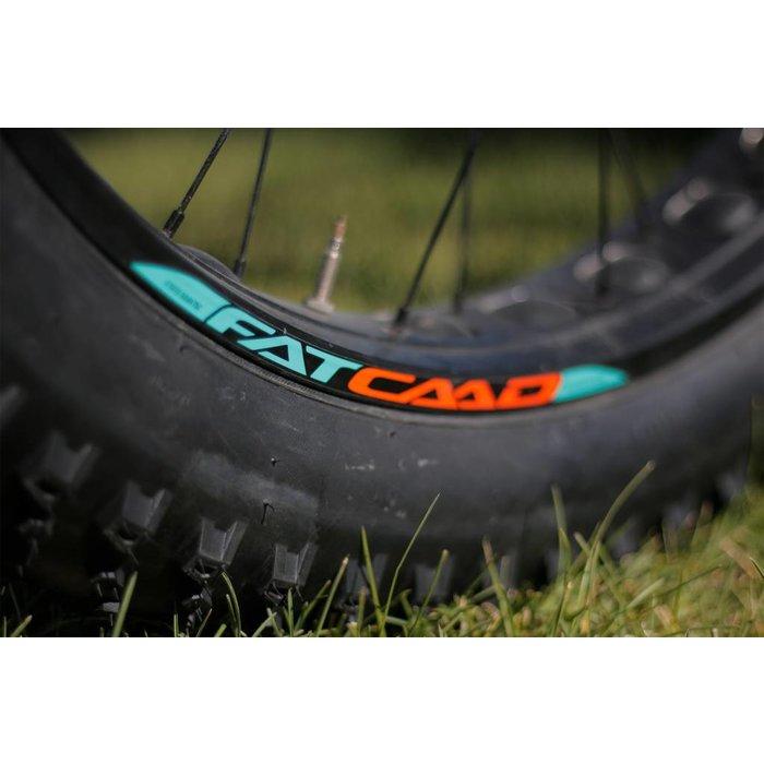 2017 Cannondale FAT Caad 3 Used