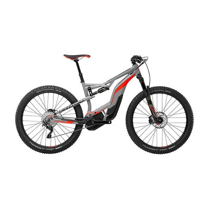 Daily Rental Cannondale Moterra 2 Grey LG