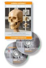 Anatomy tools Anatomy Tools Mastering The Head DVD