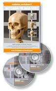 Anatomy tools Anatomy Tools Mastering The Head DVD