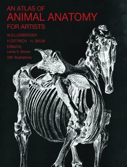 Atlas Of Animal Anatomy Book Ellenberger