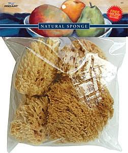 Wool Sponge Set