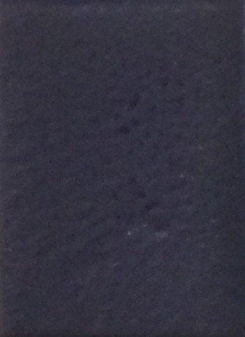 PPI Skin Illustrator 4oz Refill Ultra Blue