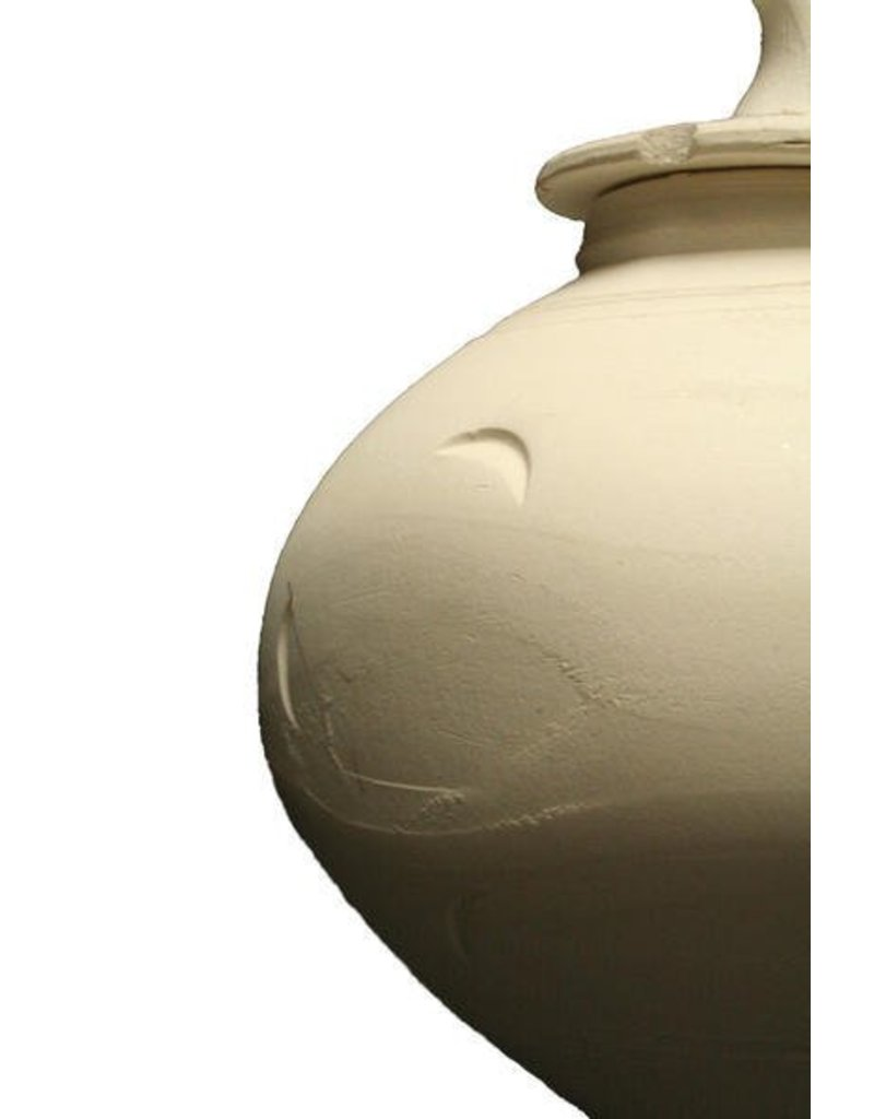 Amaco White Art Clay No.25 Moist 50lbs (Hugo Grey) (Cone 05 - 3)
