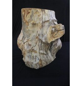 Mother Nature Wood Maple Burl 12x16x17 #30003