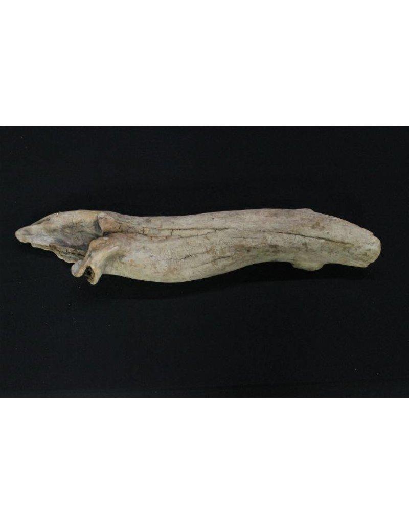 Wood Driftwood 12x6x3 #30004
