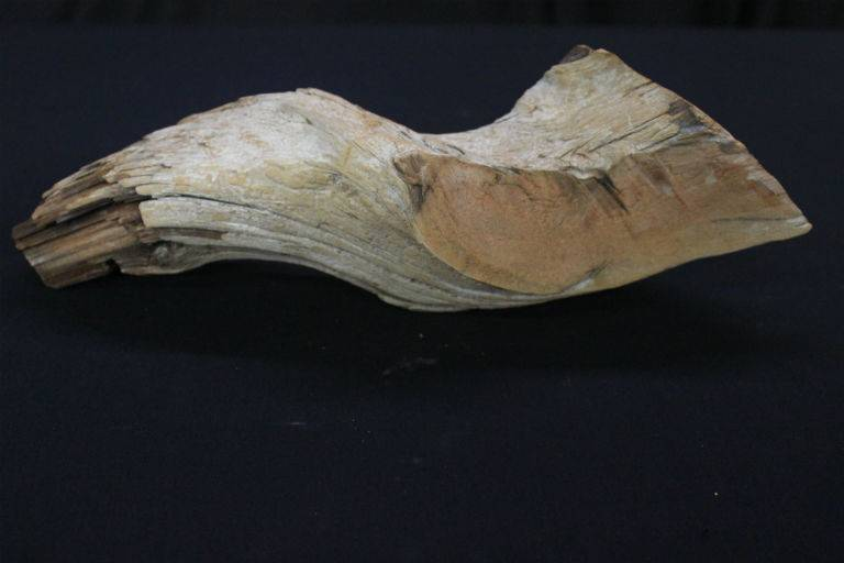 Wood Driftwood 16x6x5 #30009