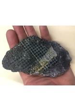 Stone Fossil Stone 3x2x1/2 #381006