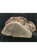 Mother Nature Wood Cherry Burl 18X19X8 #051003