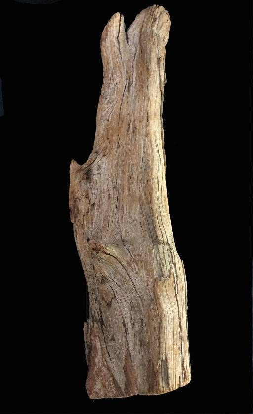 Wood Driftwood 26X7X6 #091002