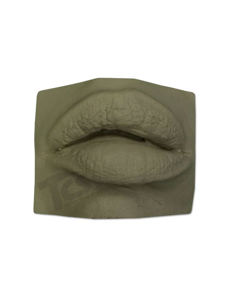 Just Sculpt Resin Mouth #1 (Parted Lips)