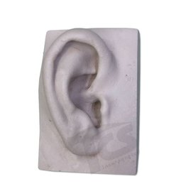 Resin Ear #1 (Young)