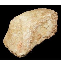 Stone 11lb Peach Translucent alabaster 11x8x4 #251019