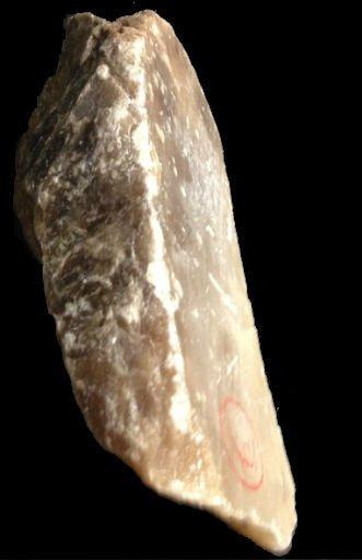 Stone 6lb Italian Agate 8x4x4 #231009