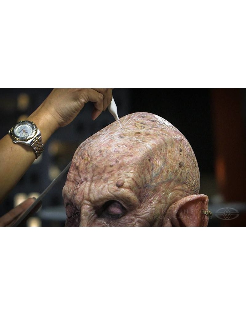 Stan Winston Character Hairwork: Hair Laying for Prosthetic Make-up Macabeo DVD