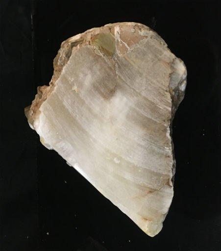 Stone 38lb Mario's White Translucent Alabaster Boulder 12x8x8 #101054
