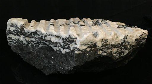 Stone 73lb White Tiger 20x11x5 #401015