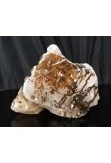 Stone 25lb Mario's White Translucent Alabaster Boulder 11x5x5 #101057
