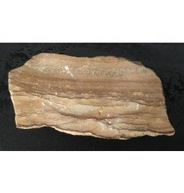 Stone 2lb Banded Limestone 6x3x1 #556101