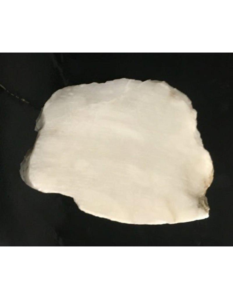 Stone 1lb Scaglione Alabaster Slab 5x3x1 #44332238