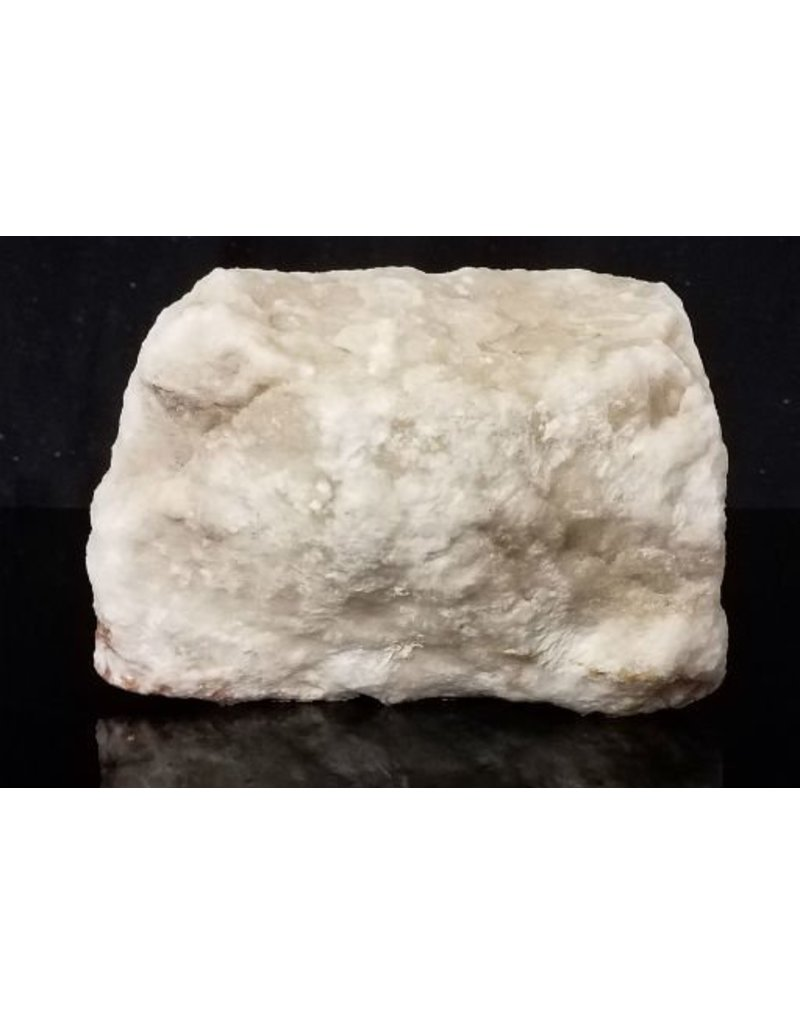 Stone 6lb Oyster Shell 6x5x3 #181004
