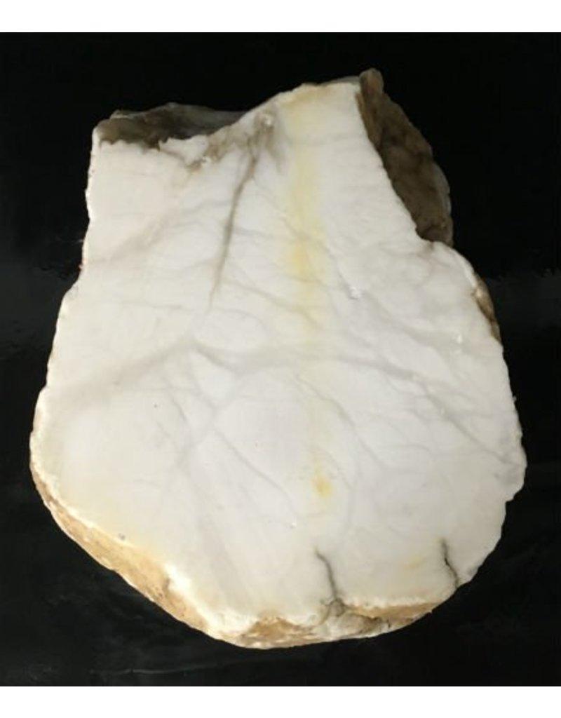 Mother Nature Stone 70lb Tirafsci's White Opaque Slab 15x11x6 #111048